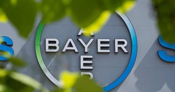 Bayer final.jpg